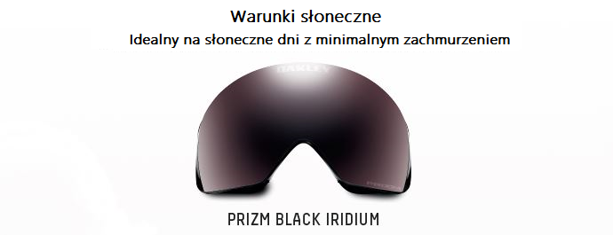 Prizm Black Iridium shield - Shield for sunny weather conditions